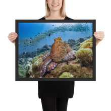 Load image into Gallery viewer, Majestic Octopus Framed Matte Print