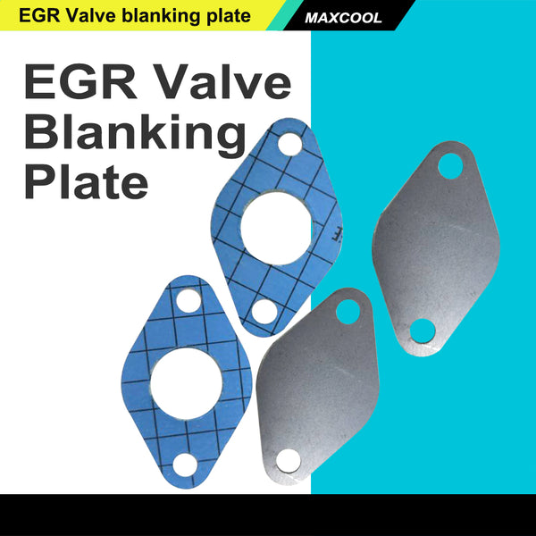 FITS VW EGR Blanking Plate Kit Fits VOLKSWAGEN VW TRANSPORTER T4 T5 3mm Thick Steel