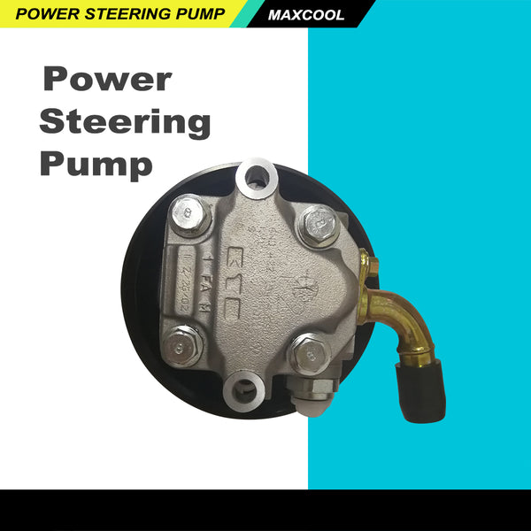 Power Steering Pump Fit for Holden VZ WL Commodore Calais Statesman Caprice 6 8