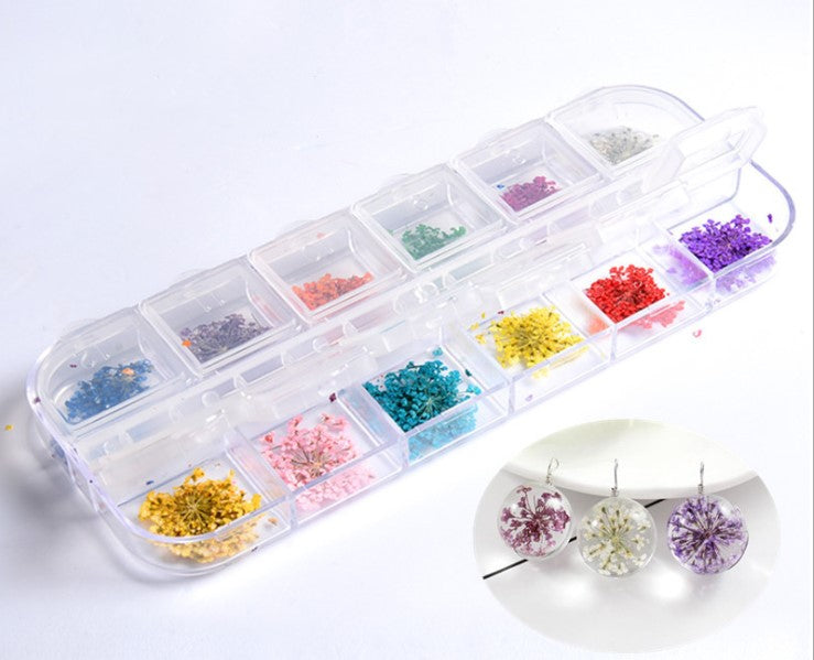 Star Flower Dried Flowers Embellishments for DIY Oxygen Resin Art UV Jewelry