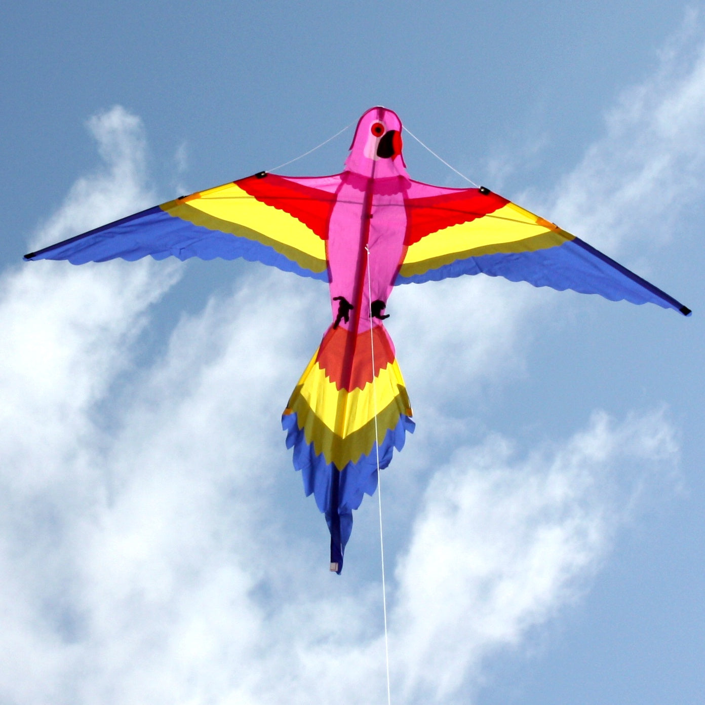 Lorikeet  Delta Kite