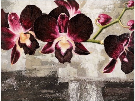 Canvas Prints - Orchids | NextBuy