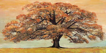 Canvas Prints - Elder Oak (120cm x 70cm)