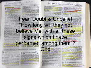 Fear, Doubt & Unbelief; Giants in the promised Land