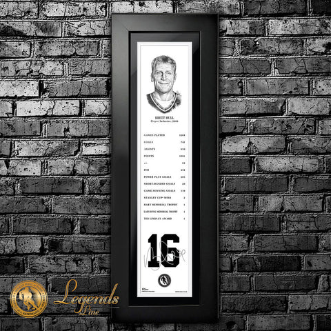 2009 Brett Hull - NHL Legends  6x22 Frame