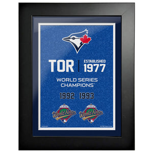 Toronto Blue Jays 12x16 World Series Empire Frame