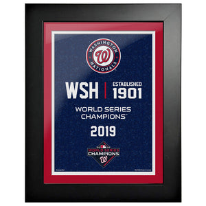 Washington Nationals 12x16 World Series Empire Frame