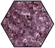 Load image into Gallery viewer, Medium fine rose pink biodegradable glitter