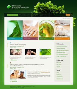 26768-WordPress Themes - GoWebBaby.Com
