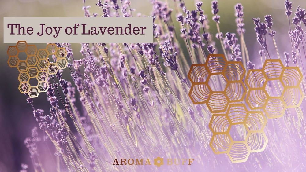 The Joy of Lavender