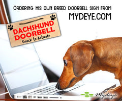 Mydeye Breed Signs