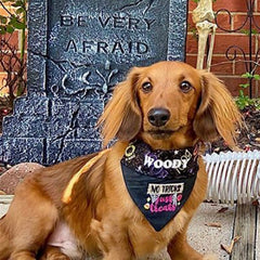 No Tricks Bandana of the Month Club Woody