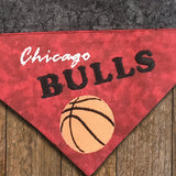 Ultimate Chicago Sports Fan - Northsiders - 4 piece set / Over the Collar Dog Bandanas