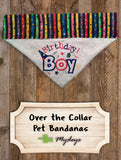Birthday Boy / Over the Collar Dog Bandana