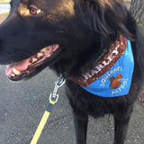squirrel patrol dog bandana