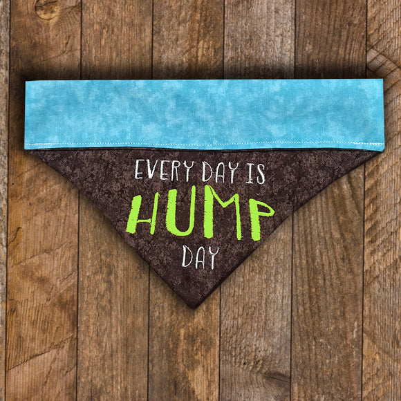 Hump Day / Over the Collar Dog Bandana