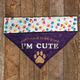 I'm Cute / Over the Collar Dog Bandana