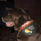 thanksgiving dog bandana