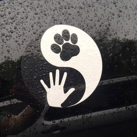 Decals - Yin-Yang / Animal-Human