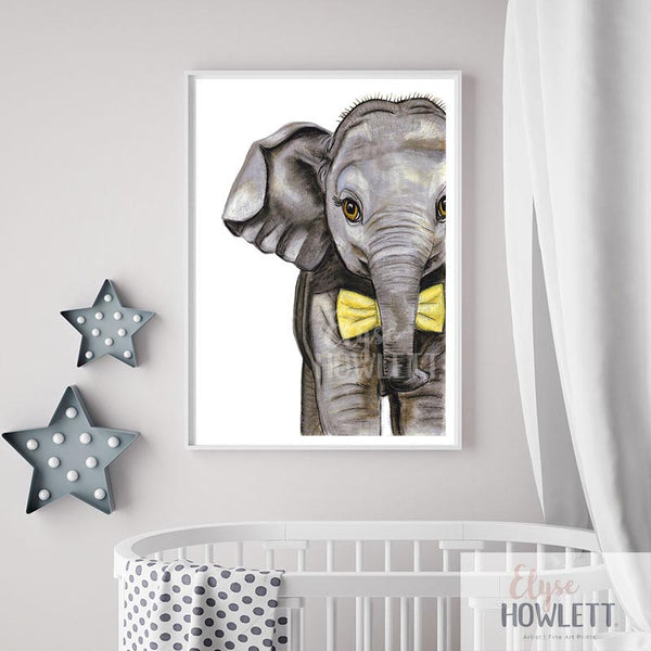 Riley the baby elephant