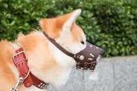 Adjustable_Leather_Dog_Muzzle_-_Size_L_-_For_Trademe15_RROZ5KFTT8DM.jpg