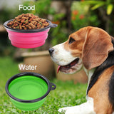Collapsible_Silicone_Pet_Bowl_-_Green_3_S13JNEUA744A.jpg