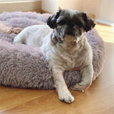 Donut_Round_Shaped_Pet_Bed_(Rose_Grey)(55cm)_7_SDP1N20PURQH.jpg