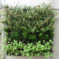 Garden_Hanging_Planter_Bag_Vertical_18_Pockets_-_For_Trademe9_RF4JZCYXDXJD.jpg