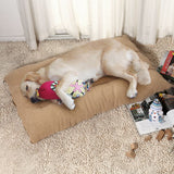 Pet_Dog_Cat_Bed_Pillow_Mattress_Bed_(Large_size)_-_For_Trademe1_RJG2KHF4WP1M.jpg