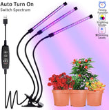 Plant_Grow_Light_-_Triple_Head_0_S7D6E62MYQWS.jpg