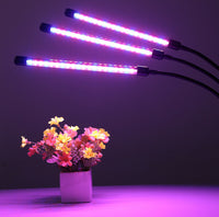 Plant_Grow_Light_-_Triple_Head_10_S7D6ECHWT6HQ.jpg