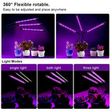 Plant_Grow_Light_-_Triple_Head_1_S7D6E77O07Z6.jpg