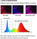 Plant_Grow_Light_-_Triple_Head_4_S7D6E9KYLPVI.jpg