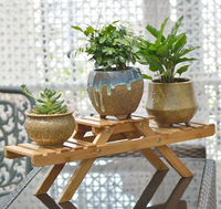 Small_2_Tier_Flower_Plant_Pot_Display_Stand_-_For_Trademe3_RN3AJ62HEA4S.png