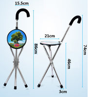Walking_Hiking_Stick_Cane_With_Seat_-_For_Trademe2_RLRR96B1S74L.jpg