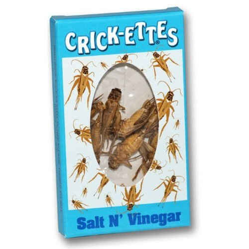 Hotlix Crickettes Salt and Vinegar snack