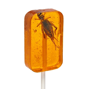 Hotlix Cricket Orange Sucker lollipop