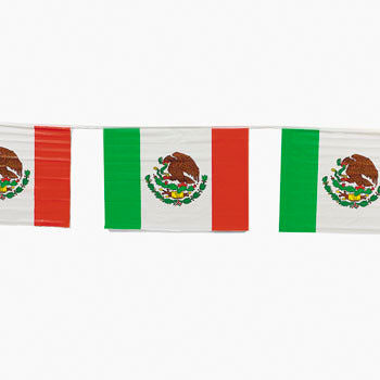 Mexican Flag Banner 30ft