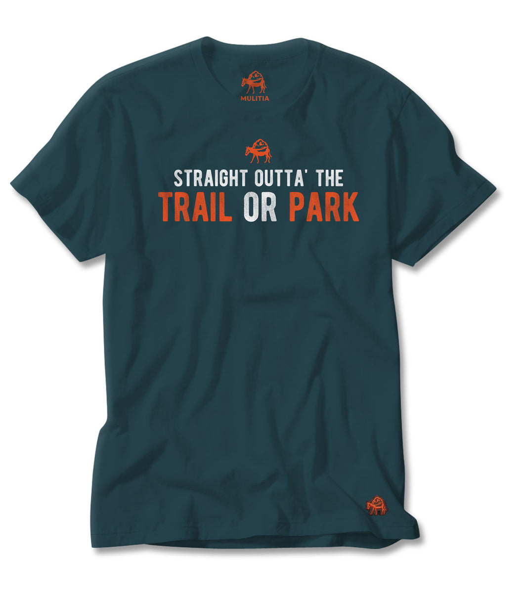 Trail or Park Tee in Teal
