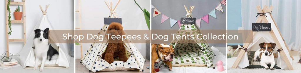 Shop our Dog Teepees, Dog Tents & Dog Beds Collection Now - Buy Dog Teepees Online & Other Pet Accessories