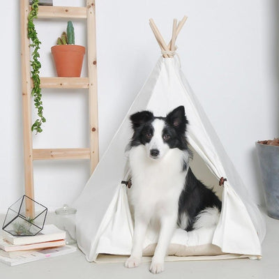 White Canvas Cotton Modern Boho Dog Teepee with Plush Dog Bed Cushion