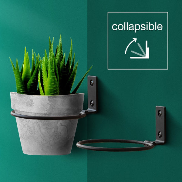 Collapsible Wall-Mounted Flower Pot Holders