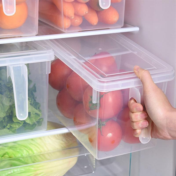 Transparent Sealable Fridge Storage Boxes-Storage-Estilo Living-Estilo Living