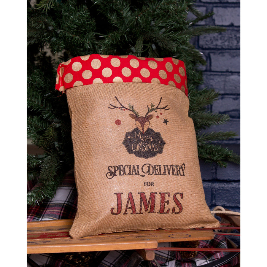 Medium Santa Sack Polka Dot