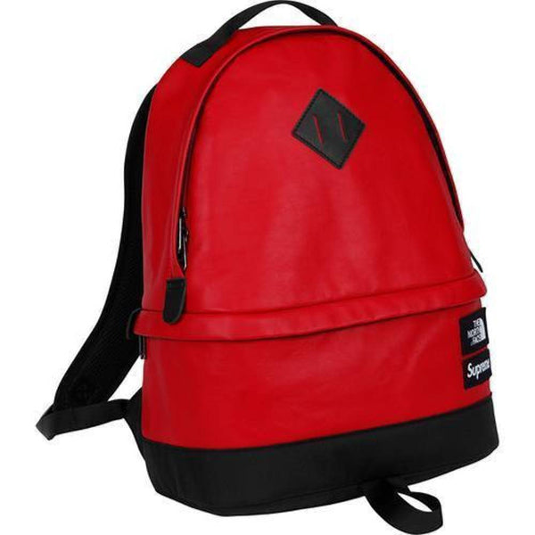 Supreme 17F/W The North Face Leather Day Pack Red