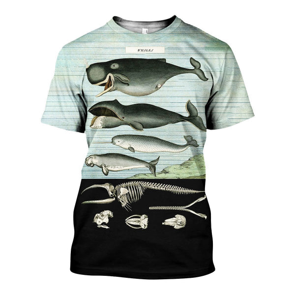 3D All Over Printed Vintage Whales Shirts And Shorts
