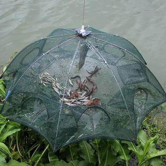 Foldable Fishing Trap