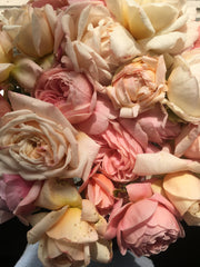 roses - muted