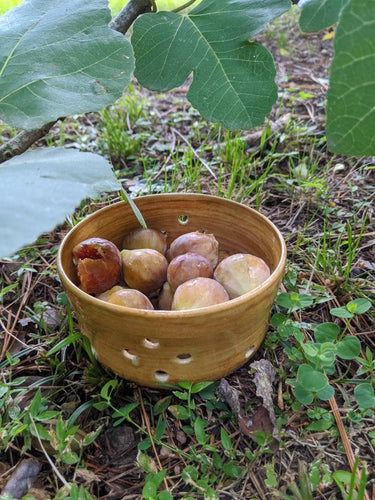 Small Tan Stoneware Berry Bowl