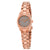 Furla Eva Warm Grey Dial Ladies Watch R4253101525